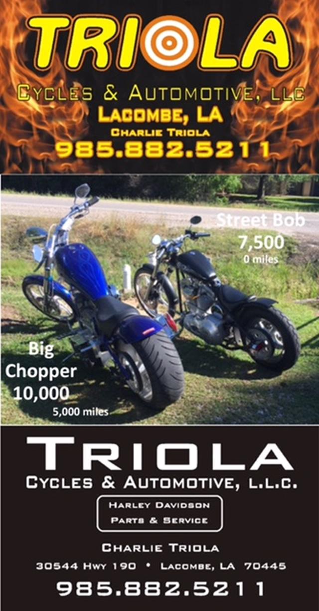 triola-ad-6f28e331.jpg