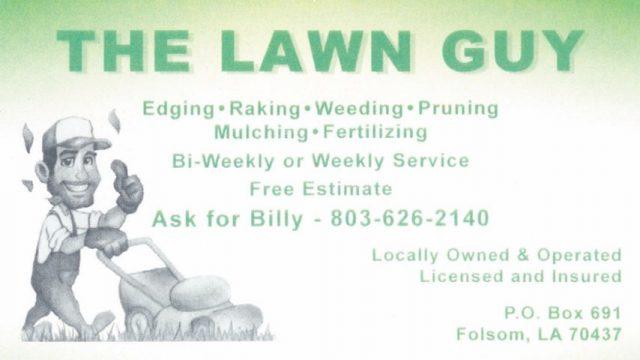 lawn-guy-1-6bedaec3-large.jpg