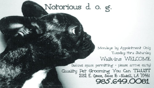 Notorious DOG